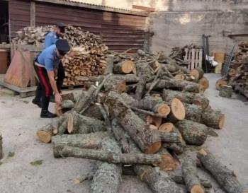 Tentato furto di legna arresti CC Mistretta 2