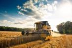 agricoltura sud
